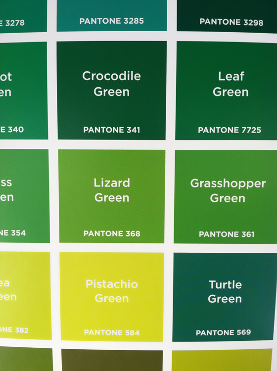 Pantone colors design of the picture book for Colors shades of green